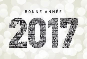 bonne-annee-2017-elvine-le-magicien-magie-magicien